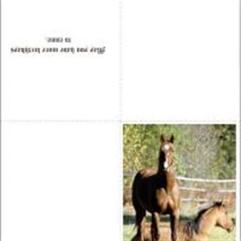 printable birthday cards horses free horse birthday card