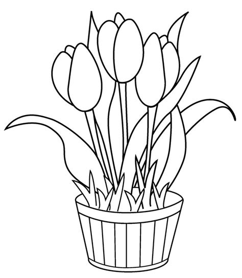 coloring pages of flowers in baskets 556 best coloring pages activites images on pinterest