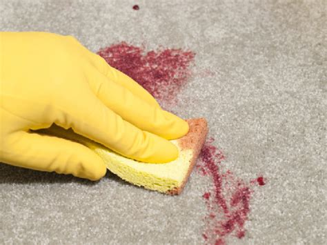 How To Dye Carpet Stains by Carpet Stain Stephani Spitzer Flickr