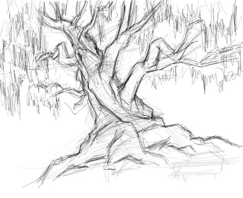 A Sketches Of Trees by Tree Sketch By Savari07 On Deviantart