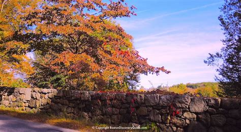 fall foliage in new england 2017 fall foliage tours 2017 boston and new england boston