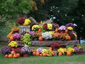 fall outdoor plants home design