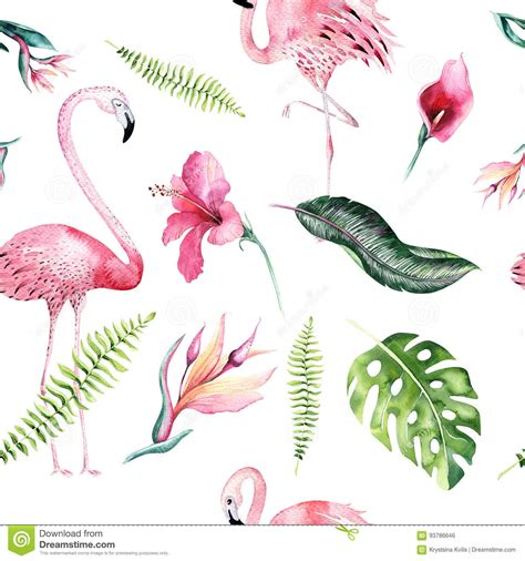 watercolor flamingos pattern vector free download tropical isolated seamless pattern with flamingo