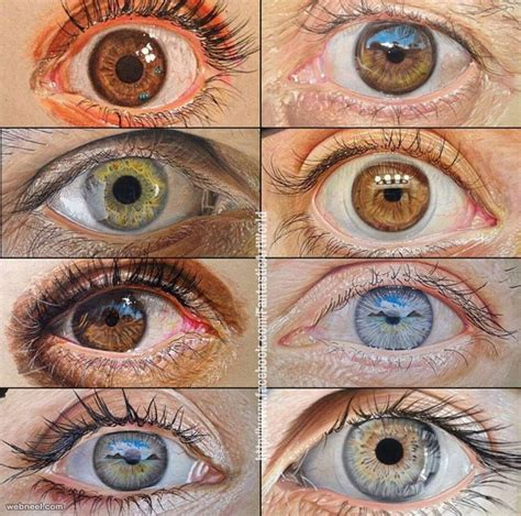 realistic eye realistic eye from 60 beautiful and realistic pencil drawings of no