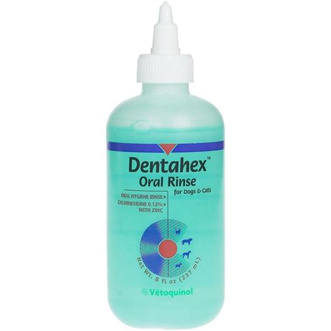 chlorhexidine for dogs dentahex rinse by vet solutions 8 oz buy at 9 99