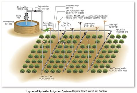 design and layout of drip irrigation system drip irrigation vs sprinkler irrigation farming agri farming