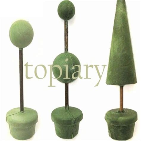 topiary forms diy how to make three topiary trees including a celosia