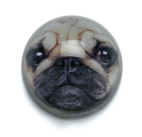 pug handbags pug handbag mirror the pug welfare rescue association