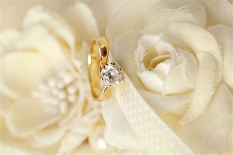 wedding background ring wedding background flowers ring lace soft свадьба цветы