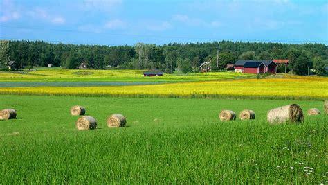 landscape sweden rural small farm by olof s
