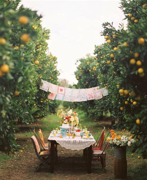 vintage backyard party intimate outdoor wedding ideas