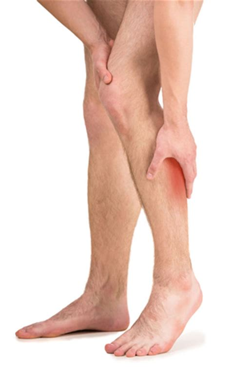 hurt leg leg pictures posters news and on your pursuit hobbies interests and