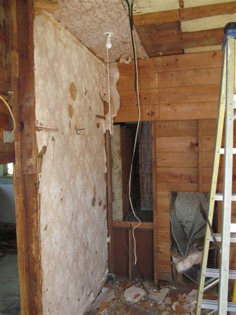 dead bat in basement related keywords dead bat in