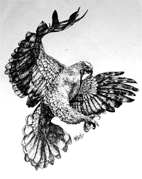 Dekker Fox Standar White Hawk Tanduk flying hawk drawing