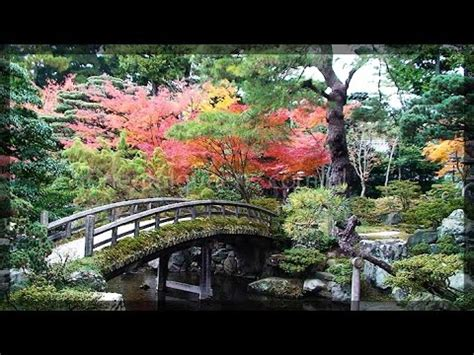 kyoto autumn leaves at daitokuji temple ,japanese garden