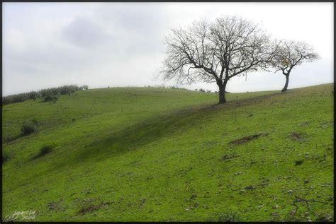 la colina de edeta 8408090941 tenemos que hablar la colina
