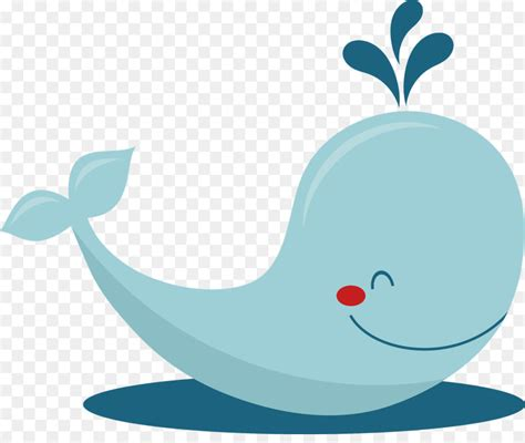 baby whale clipart baby whale drawing clip beluga whale cliparts png