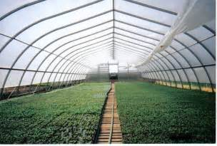 Backyard Airplane Large Greenhouses Multi Shelter Solutions