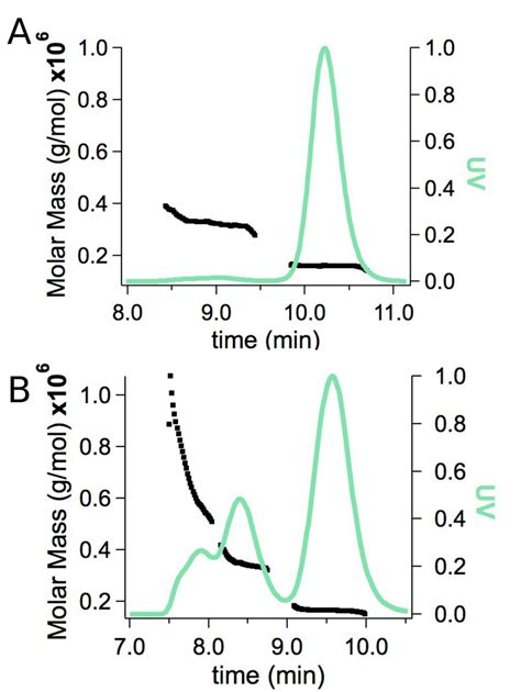 multi angle light scattering size exclusion chromatography coupled with multi angle