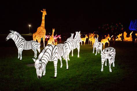 new year lantern festival chiswick london s magical lantern festival transforms