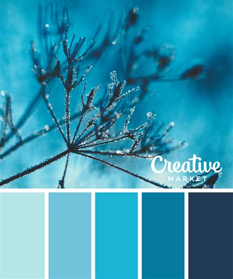 winter color palette 15 downloadable color palettes for winter creative