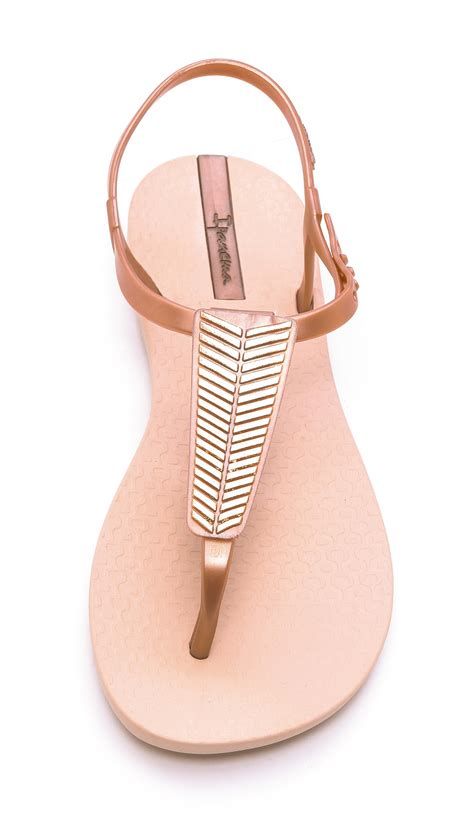Ipanema Sandal Wanita Tali Polos ipanema sandals gold in pink lyst