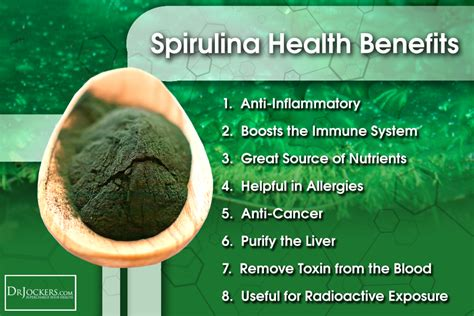 Chlorella For Mold Detox by 7 Supplements To Detoxify Your Drjockers
