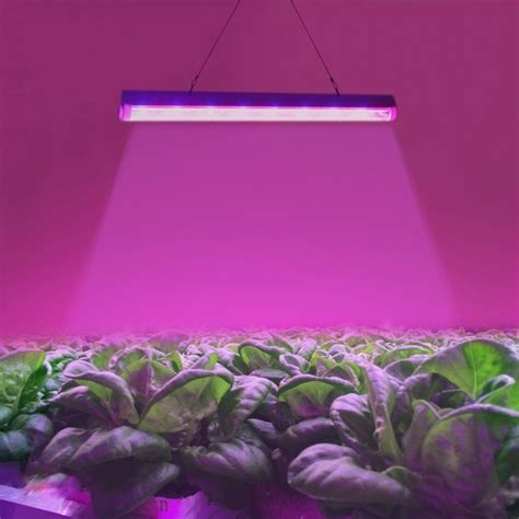 led lights for aquarium plants t5 4 8w 24 leds led plant growth light greenhouse light