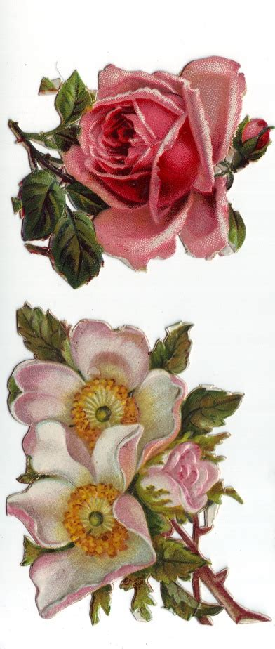victorian rose tattoo 88 best images about tattooo on ink