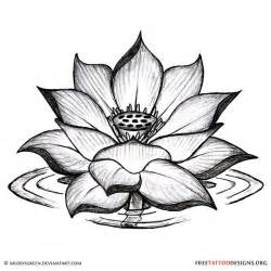 Lotus Design Best 25 Black Lotus Ideas On Black