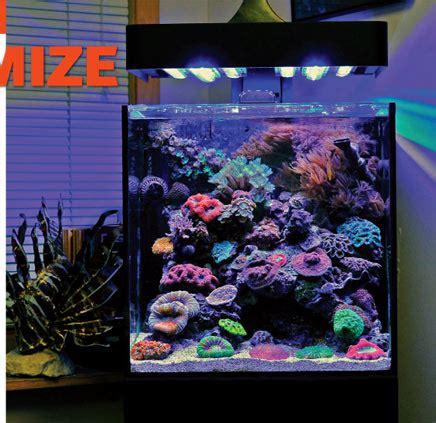 Cool Aquascapes Aquascaping Nano Reef Aquariums How To Maximize Limited