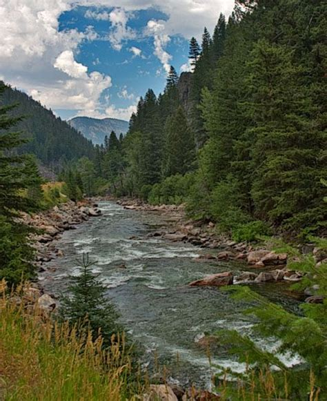Fishing The Gallatin River Montana | the gallatin river montana favorite places spaces