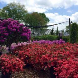 barton nursery 16 rese 241 as viveros y jardiner 237 a 949