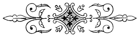 New Decorative Black Flower 5m black and white line drawings ornamental doodads the