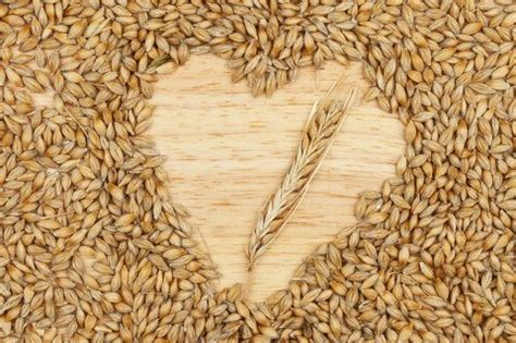 whole grains barley barley nutrition facts benefits how to cook it
