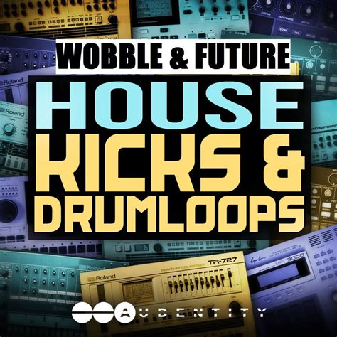 Audentity Wobble And Future House Kicks And Drumloops | audentity wobble future house kicks drumloops