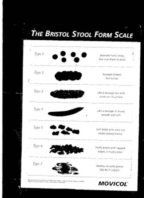its a boat elaine not a bloody hotel the bristol stool