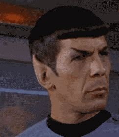 amused trek gif find on giphy