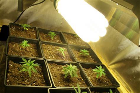 chauffage pour chambre de culture tutos culture de cannabis les eco basse consommation