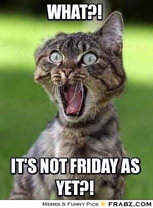 Is It Friday Yet Meme - it 39 s not friday yet meme