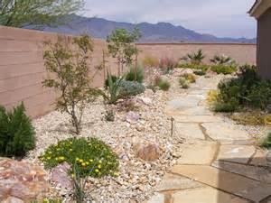 desert style landscaping ideas desert landscaping picks