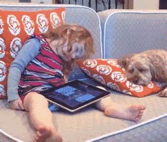 dogs falling asleep and fall asleep on a gifrific