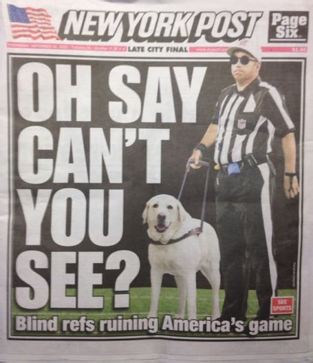 seeing eye dogs a seeing eye the replacement refs and america