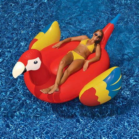 Pool Toys swimline parrot 93 in ride on pool nt2674 the home depot