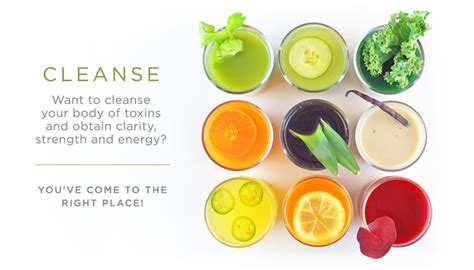 Similar Words For Detox by List Of Synonyms And Antonyms Of The Word Cleanse
