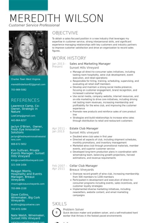 resume format for sales and marketing professional vertriebs und marketingleiter cv beispiel visualcv
