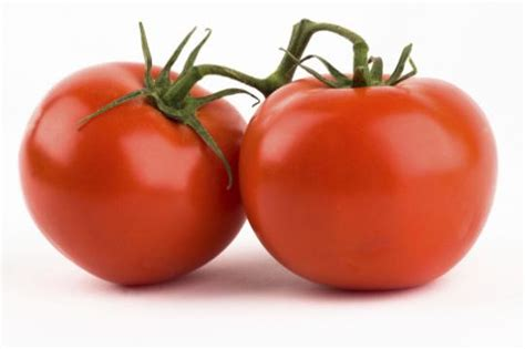 k v fruit do you can you eat tomato s yahoo answers