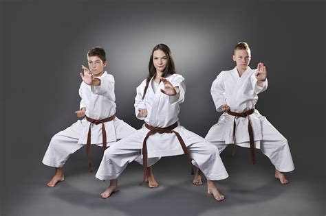 imagenes de mujeres karatecas las 50 mejores frases sobre el karate lifeder