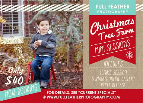 full feather photography christmas mini sessions in