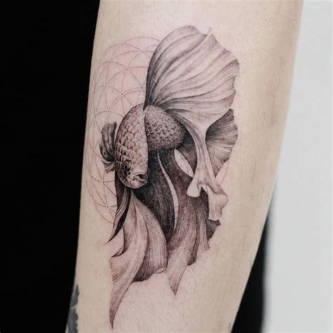 tattoo fish designs betta splendens fish forearm tattoos